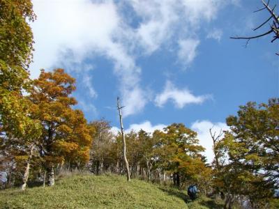 2007-10-20-221.jpg