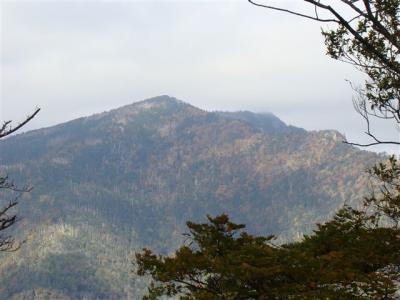 2007-10-20-227.jpg