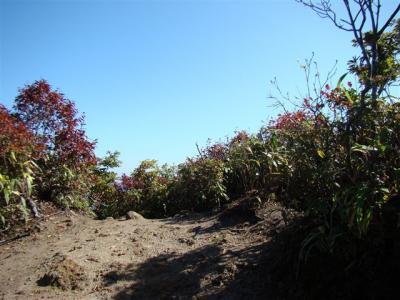 2007-10-28-144.jpg