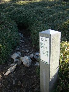 2007-11-04-089.jpg
