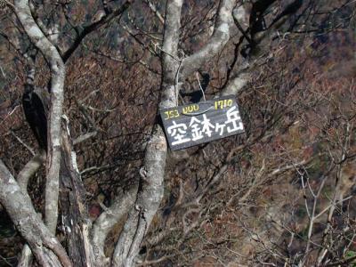2007-11-04-145.jpg