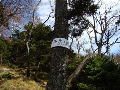 2007-11-04-203.jpg