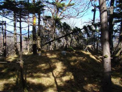 2007-11-04-209.jpg
