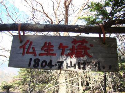 2007-11-04-210.jpg