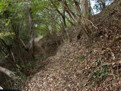 2007-11-10-018.jpg