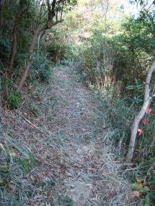 2007-11-10-059.jpg