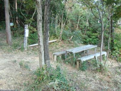 2007-11-10-061.jpg