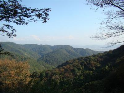 2007-11-10-087.jpg