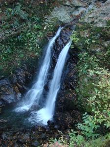 2007-11-17-006.jpg