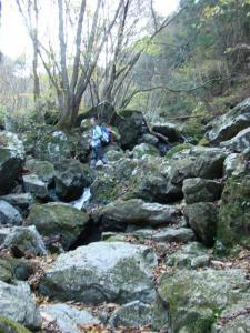 2007-11-17-010.jpg
