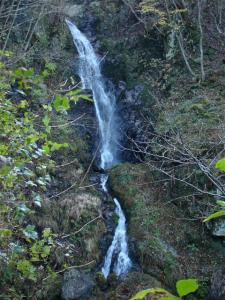 2007-11-17-017.jpg