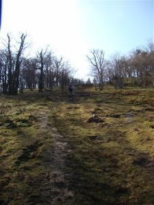 2007-11-17-043.jpg