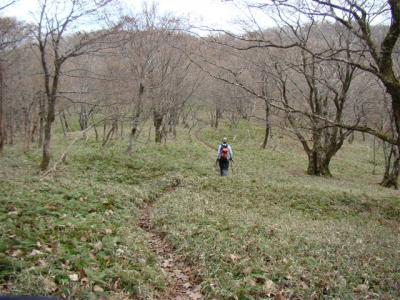 2007-11-17-060.jpg