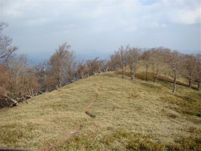 2007-11-17-074.jpg