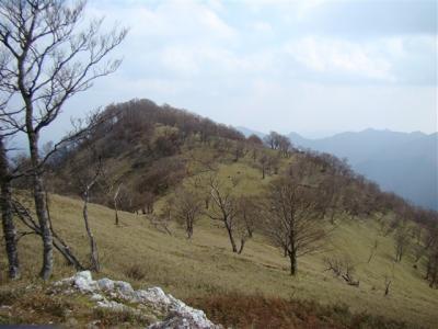 2007-11-17-083.jpg