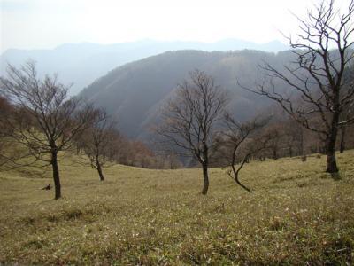 2007-11-17-095.jpg