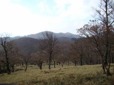 2007-11-17-164.jpg