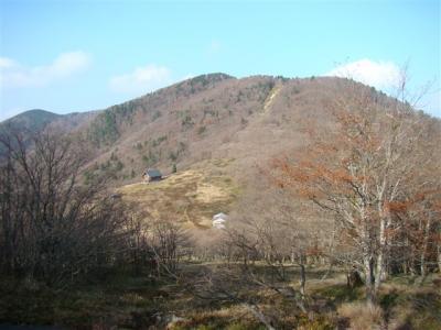 2007-11-17-174.jpg