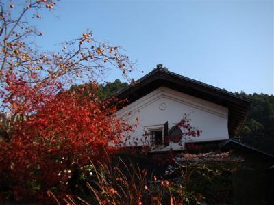 2007-11-24-028.jpg