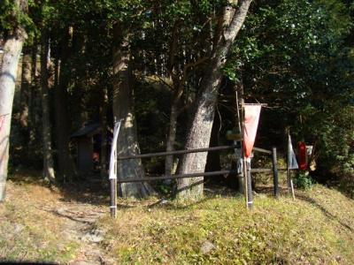 2007-11-24-054.jpg