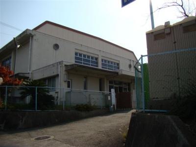 2007-12-01-004.jpg