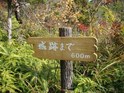 2007-12-01-053.jpg