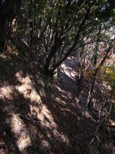 2007-12-01-090.jpg