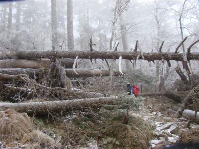 2007-12-09-044.jpg