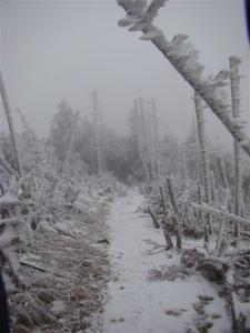 2007-12-09-156.jpg