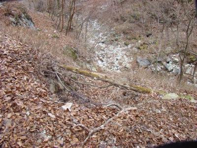 2007-12-09-183.jpg