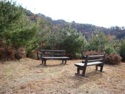 2007-12-23-059.jpg