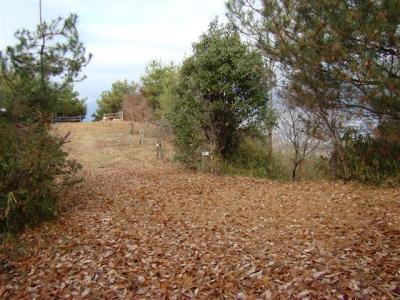 2007-12-23-062.jpg