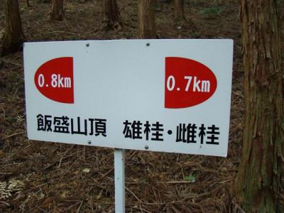 2008-01-02-037.jpg