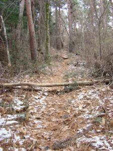 2008-01-02-043.jpg