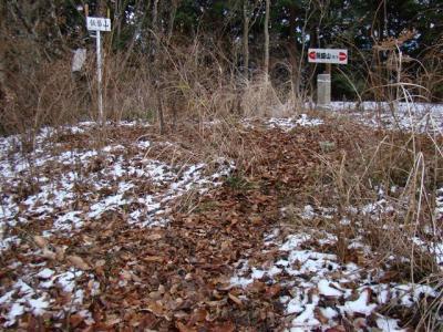2008-01-02-053.jpg