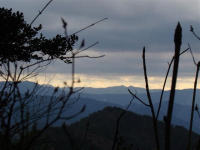 2008-01-02-059.jpg