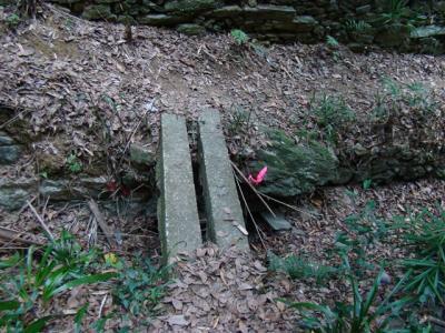 2008-01-04-122.jpg