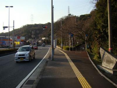 2008-01-04-176.jpg