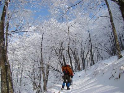 2008-01-05-075.jpg