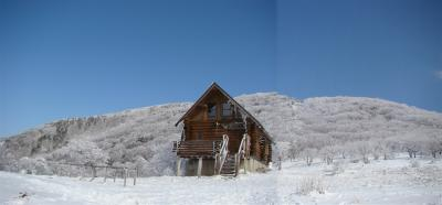 2008-01-05-p2.jpg