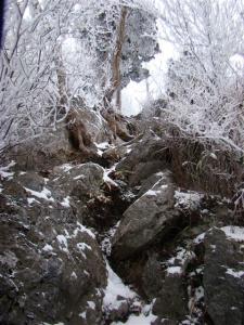 2008-01-14-044.jpg