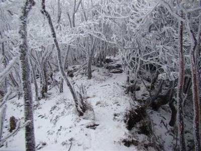 2008-01-14-051.jpg