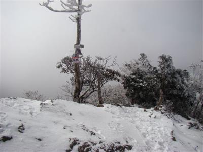 2008-01-14-063.jpg