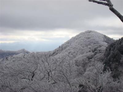 2008-01-14-079.jpg