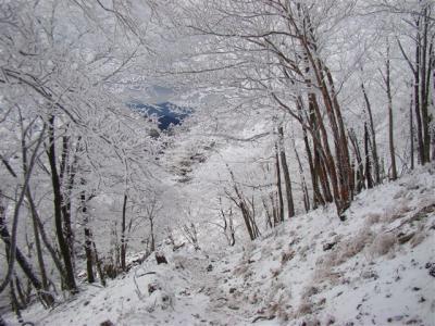 2008-01-14-140.jpg