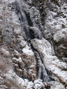2008-01-14-146.jpg