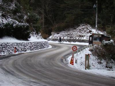 2008-01-27-043.jpg