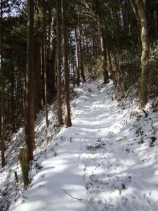 2008-01-27-060.jpg