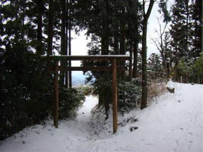 2008-01-27-075.jpg