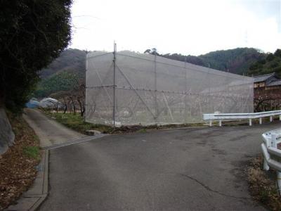 2008-02-01-021.jpg